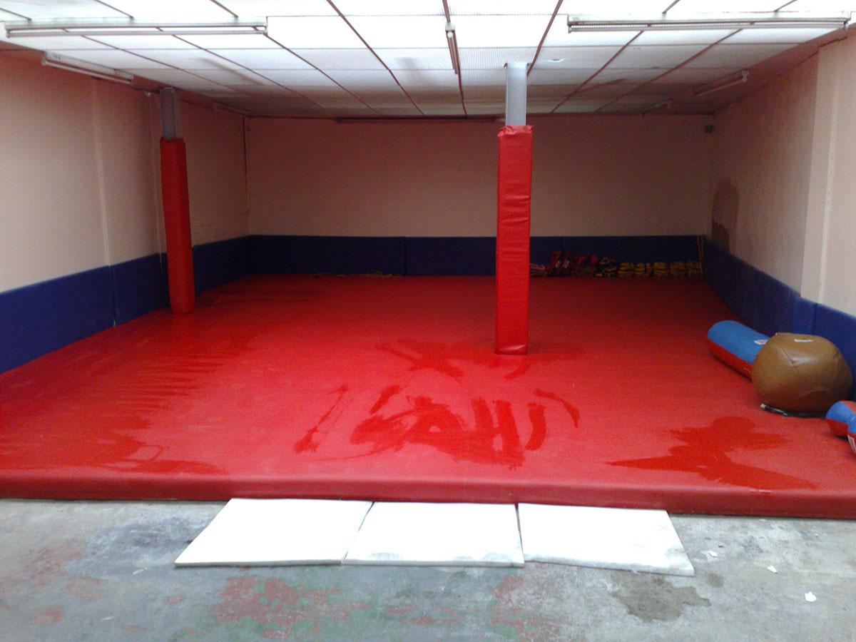 Red Gym Mat 1