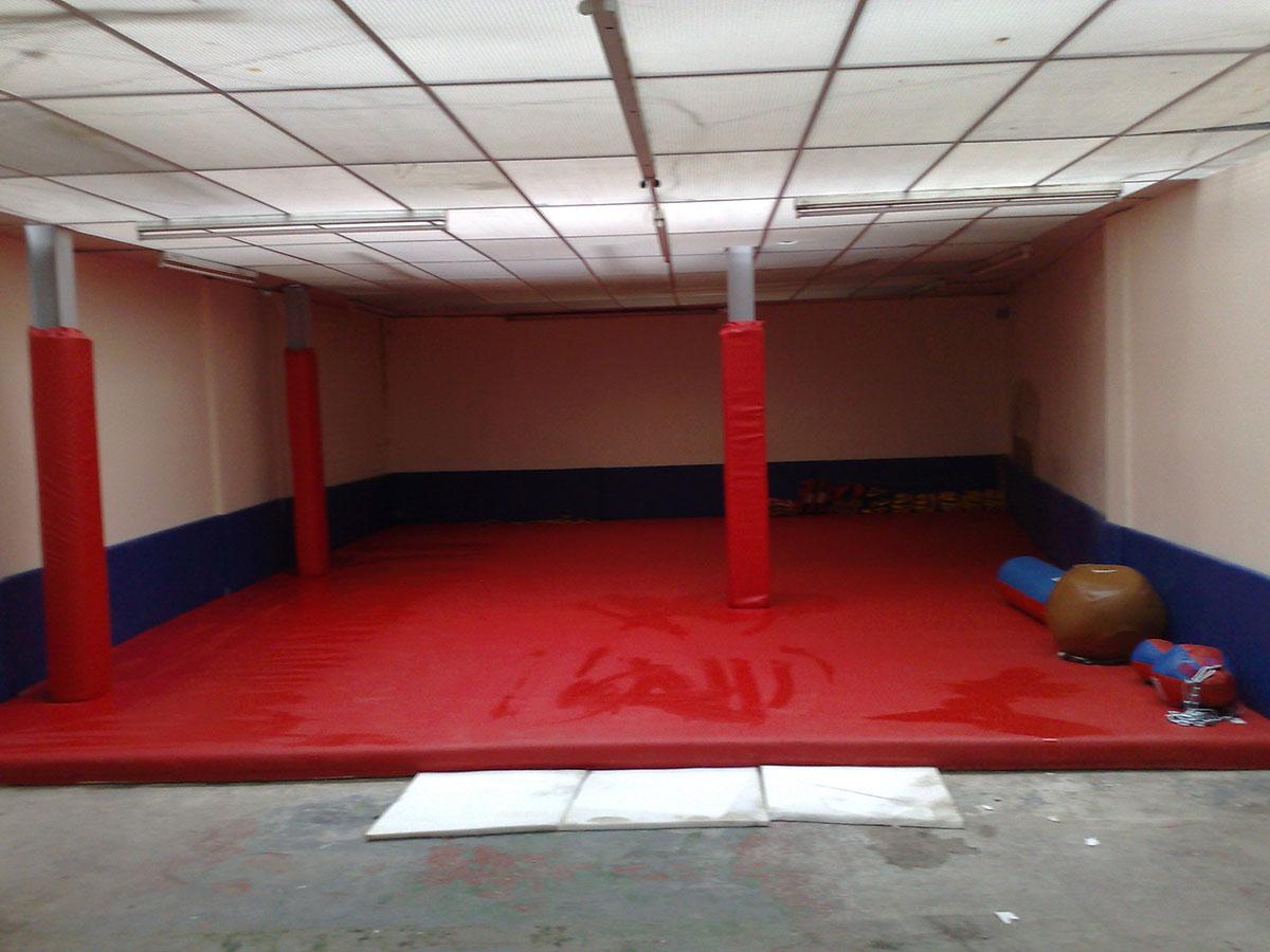 Red Gym Mat 2